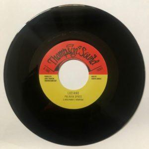 Luciano Palavin Spree 7 vinyl