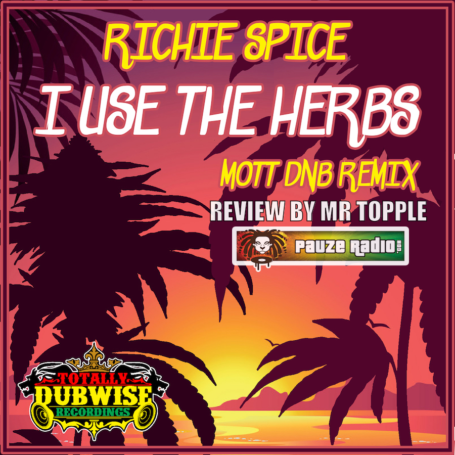 Richie Spice I Use The Herbs Review